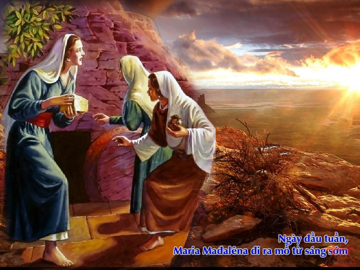 Kinh thánh bằng hình: Chúa nhật Phục Sinh năm C