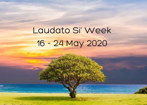 Tuần lễ kỉ niệm 5 năm Laudato Si', tháng Ramadan và đức tin trong đại dich