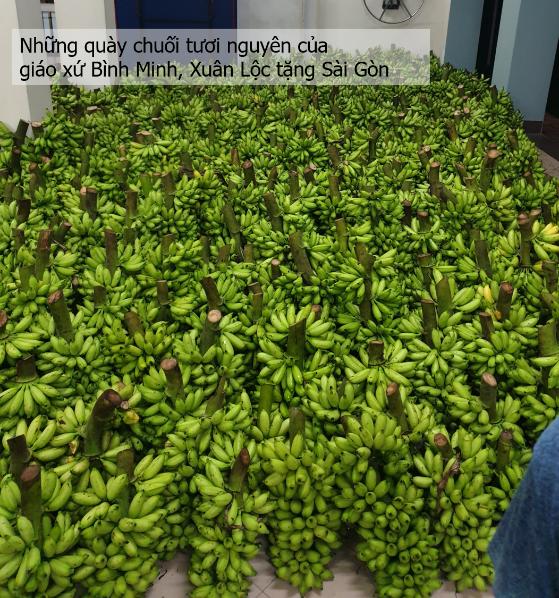 Giáo xứ Bình Minh thương tặng Sài Gòn 8 tấn chuối